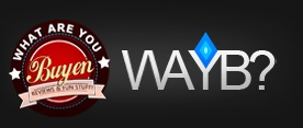 WAYB logo little